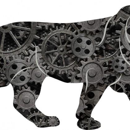 Make In India  Webkraft Solutions